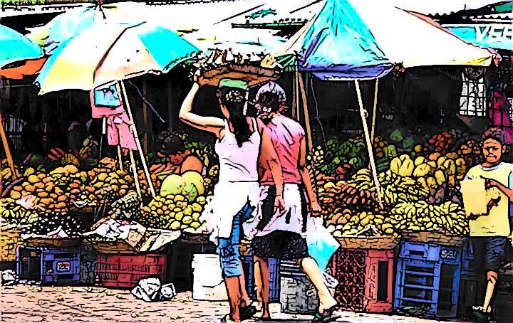 caricatura, mercado � Yoyita