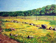 Yellow field © Dr. Gloria  M. Norris Yoyita