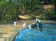 Lavando en la laguna
