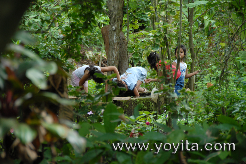 children playing on exuberant vegetation full of exotic plants and birds