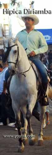 white horse hipica