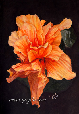 Orange geschichteten Hibiscus Blüten in Aquarell by Yoyita