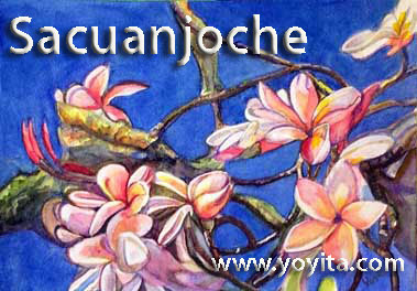 Sacuanjoche National Flower � Yoyita