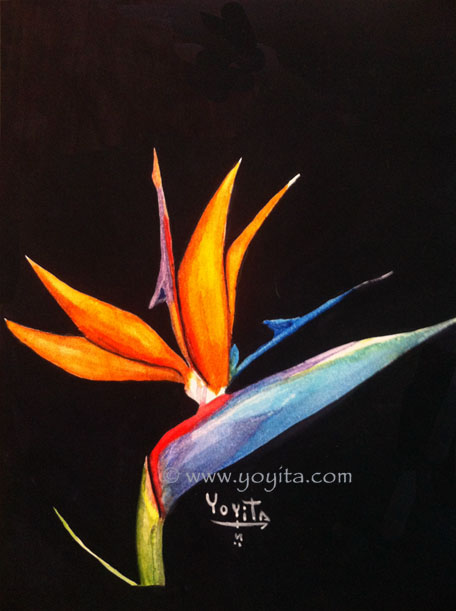 Bird of paradise flower, watercolor by Yoyita