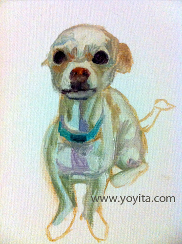 chihuahua starting the painting, learning to paint Atelier Yoyita