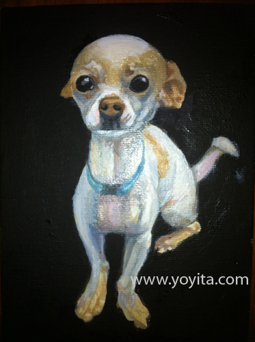 chihuahua sequence 5 the painting, learning to paint Atelier Yoyita
