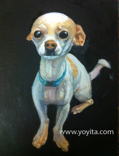 chihuahua sequence 6 the painting, learning to paint Atelier Yoyita