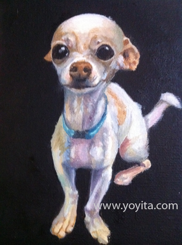 chihuahua sequence 8 the painting, learning to paint Atelier Yoyita